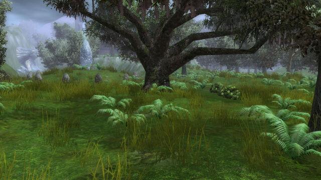 File:Oaknest Forest.jpg