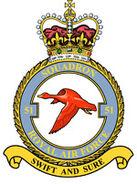 Squadron Emblem