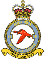 File:Squadron Emblem.jpg