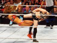 Paige side kick