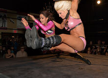 Angelina Love bulldog