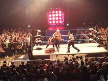 TNA Alpha Female vs Velvet