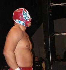 565px-Wrestler Incognito