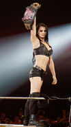Paige WWE Divas Champion