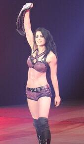 Paige Wins WWE Divas Championship