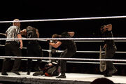 The Shield Teamwork (1)