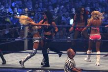 800px-Diva Battle Royal at WrestleMania 25