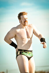 401px- Sheamus Tribute to the Troops 2010 (1)