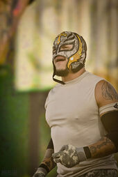 401px-Rey Mysterio Tribute To The Troops