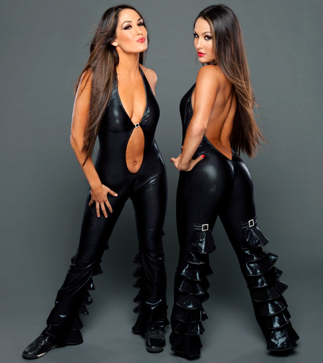 The-Bella-Twins-wwe-divas-33892190-642-722