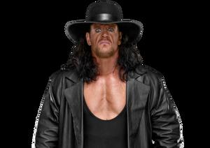 Undertaker pro