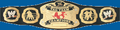 World Tag Team Championship icon
