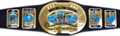 WWE Intercontinental Championship icon