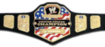 WWE United States Championship icon
