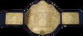 World Heavyweight Championship icon