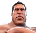 File:Andre the Giant headshot.png