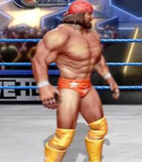 Randy Savage primary attire