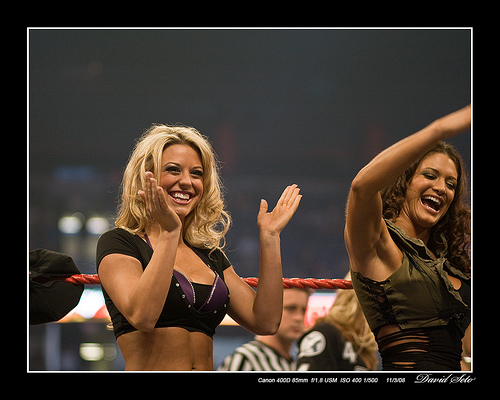File:Divas WWE Monday Night Raw 800th Tampa.jpg