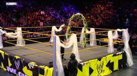 2010-11-02 NXT