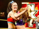 March 20, 2014 NXT