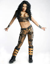 Backstage-Beauties-Melina-wwe-divas-5483987-306-390-1-