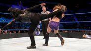Tamina strike kick