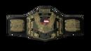WCW US Championship