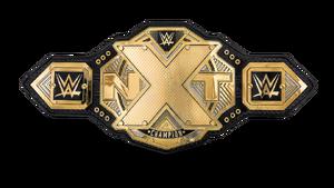 NXT Championship 17