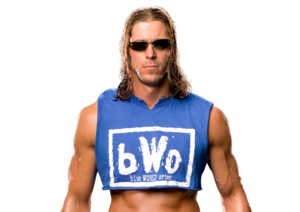 Stevie Richards pro
