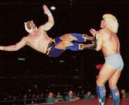 Tiger Mask drop-kick Ric Flair