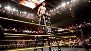 Finn Balor Ladder