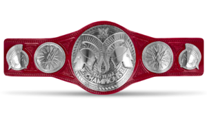 WWE Raw Tag-Team Championship