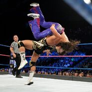 Gable suplex Breeze