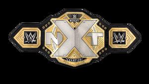 NXT Womens Championship 17