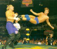 Terra WCW