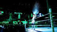 Triple H WM29