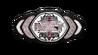 NXT Womens Championship