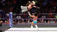 Enzo jumped on Tony-Nese