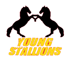 YoungStallions