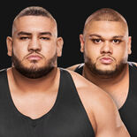The_Authors_of_Pain