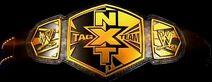 NXT Tag Team Championship