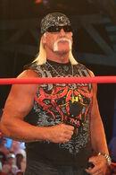 Hulk Hogan July 2010