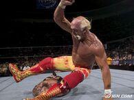 Hogan-akcja