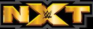 NXTtransparent