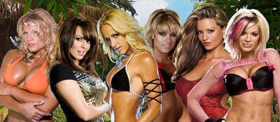 Divas Battle Royal SummerSlam '09
