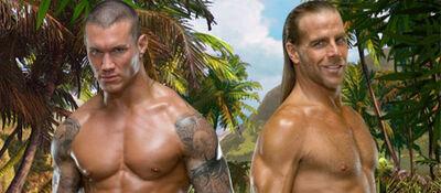 Orton vs HBK SummerSlam '09