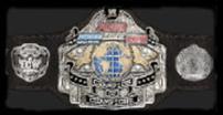 Champion of champions belt