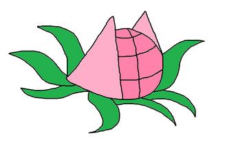 Chakra Fruit