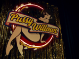 Pussy Willows