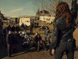 Bobo's Trailer Park
